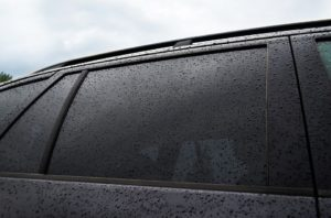car window tinting purga